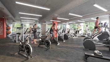 Gym2 qyvtcj