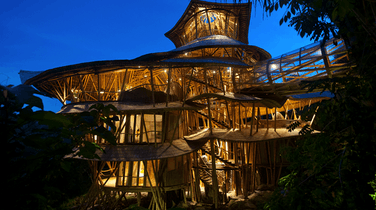 Six Treehouses That Are Way Cooler Than Any Home