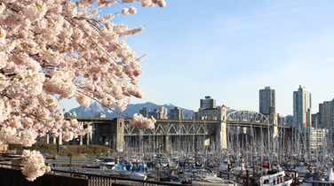 Vancouver Real Estate Sales in March Smash All Records: REBGV