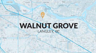 Neighbourhood Focus Infographic: Walnut Grove