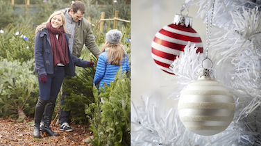 Christmas Trees: Artificial or Real? The Pros and Cons